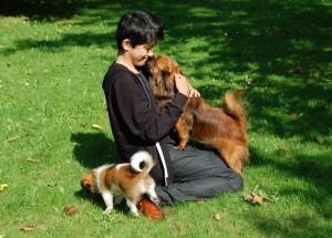 Hundene elsker gæster