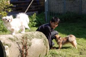 Daisy, Einar og Tosca