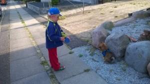 Hundefører eller førerhund ?